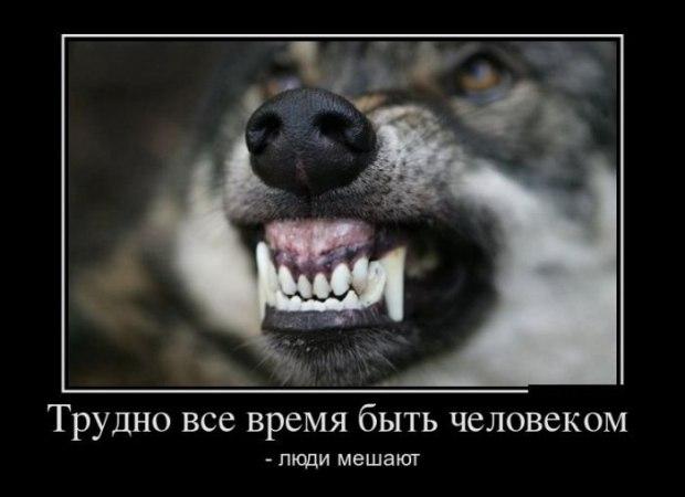 НАПЛЮЙ -  СРАЗУ СТАНЕТ ЛЕГЧЕ...